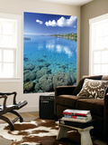 Reef, Punaauia, Tahiti, French Polynesia Wall Mural by Walter Bibikow