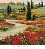 Hills in Bloom II Prints by David Jackson