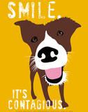 Smil, på engelsk Plakater af Ginger Oliphant