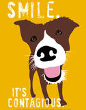 Glimlach, poster van hond met Engelse tekst: Smile, it's contagious Posters van Ginger Oliphant