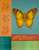 Colorful Wings II Prints by Vivien Rhyan