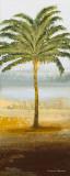 Beach Palm II Prints by Michael Marcon
