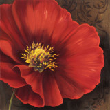 Rouge Poppies I Prints by Jordan Gray