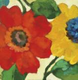 Anemone Garden II Poster von Kim Parker