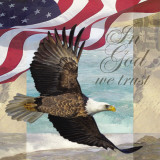 Freedom I Prints by Todd Williams