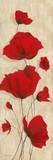 Favorite Blossoms II Plakater