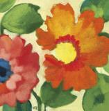Anemone Garden IV Posters par Kim Parker