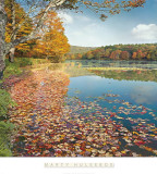Bass Lake In Autumn II Prints by Marty Hulsebos
