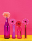 Pop Flowers Prints by Camille Soulayrol