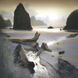 William Vanscoy - She Sleeps In The Sand Obrazy