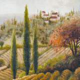Tuscany Vineyard II Prints by Michael Marcon