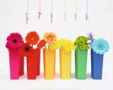 Multicolor Prints by Amelie Vuillon