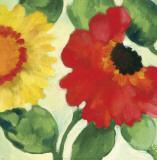 Anemone Garden III Kunstdrucke von Kim Parker