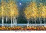 Lua azul Arte por Melissa Graves-Brown