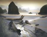 She Sleeps In The Sand Poster von William Vanscoy