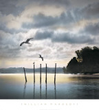 Circling Skies Plakater af William Vanscoy