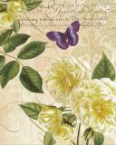 Golden Roses Posters par Paula Scaletta