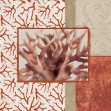 Coral Branch II Prints by Elizabeth Medley