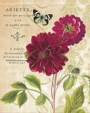 Les dahlias rouges Affiche par Paula Scaletta