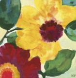 Anemone Garden I Affiches par Kim Parker