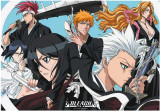 Bleach -Ichigo Group 1-One Sheet Photographie