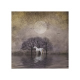 White Horse in Pond Giclee Print by Dawne Polis