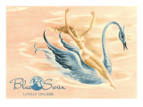 Blue Swan Lingerie Advertisement Prints