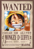 One Piece - Gesucht! Monkey D. Ruffy Poster