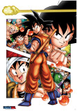 Dragon Ball-Son Goku Story-One Sheet Kunstdrucke