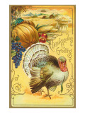 Thanksgiving Greetings, Turkey and Pumpkin, Art Print