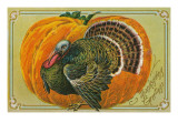 Thanksgiving Greetings, Turkey, Pumpkin Posters