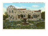 Friedrich Rock Home, San Antonio, Texas Posters