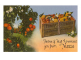 Orange Crate from Texas Poster
