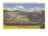University Stadium, Knoxville, Tennessee Posters