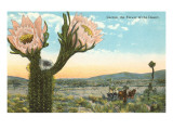 Blooming Cactus Posters