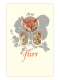Furs: Fox, Lynx, Mountain Lion Prints