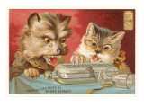Shocked Victorian Cat and Dog Prints