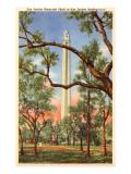 San Jacinto Memorial, Texas Posters