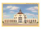 Municipal Airport, Houston, Texas Prints