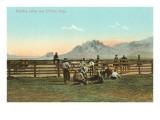 Branding Calves near El Paso, Texas Prints