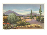 Gila Monster and Cacti Prints