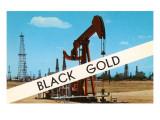 Black Gold, Oil Field Print