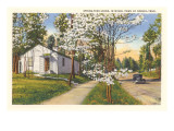 Springtime in Norris, Tennessee Poster