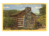 Typical Home in Great Smoky Mountains Prints