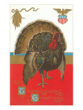 Thanksgiving Greetings, Turkey Prints