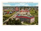 Montrose Boulevard, Museum der Schönen Künste, Houston, Texas Kunstdrucke