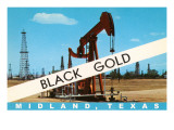 Black Gold, Midland, Texas Prints