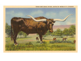 Long Horn Steer, Rockdale, Texas Prints