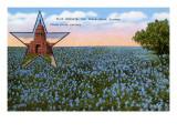 Campo de blue bonnets, flor del estado de Tejas Lámina giclée prémium