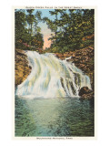 Queen Creek, Great Smoky Mountains Posters